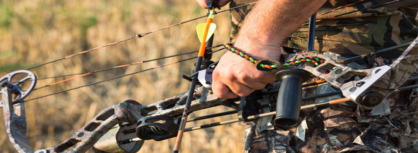 Top 5 Best Compound Bows for Beginners  in 2019: Reviews & Buying Guide