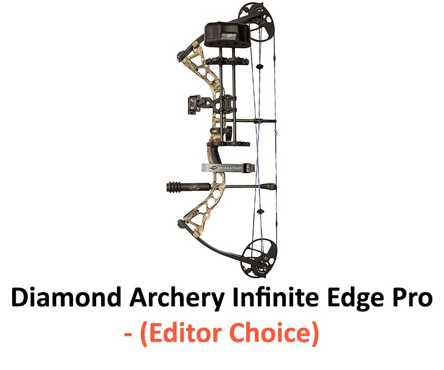 Best Compound Bows for Beginners