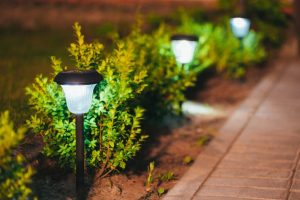 Best Solar Light for Garden